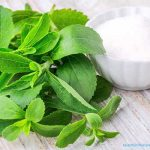Stevia to replace Sugar