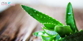 Medicinal Benefits of Aloe Vera
