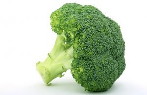 Vegetables Broccoli